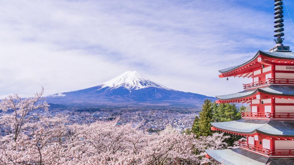 为什么日本会对法语国家国际组织的全体国家开放呢?