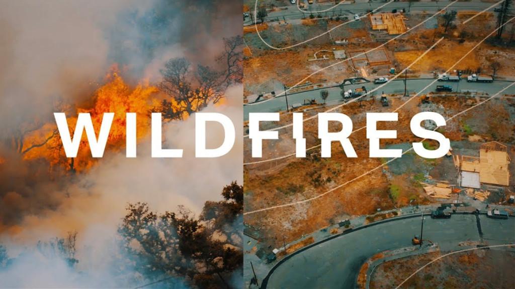 为什么美国加州每年都有扑不灭的大火?🔥