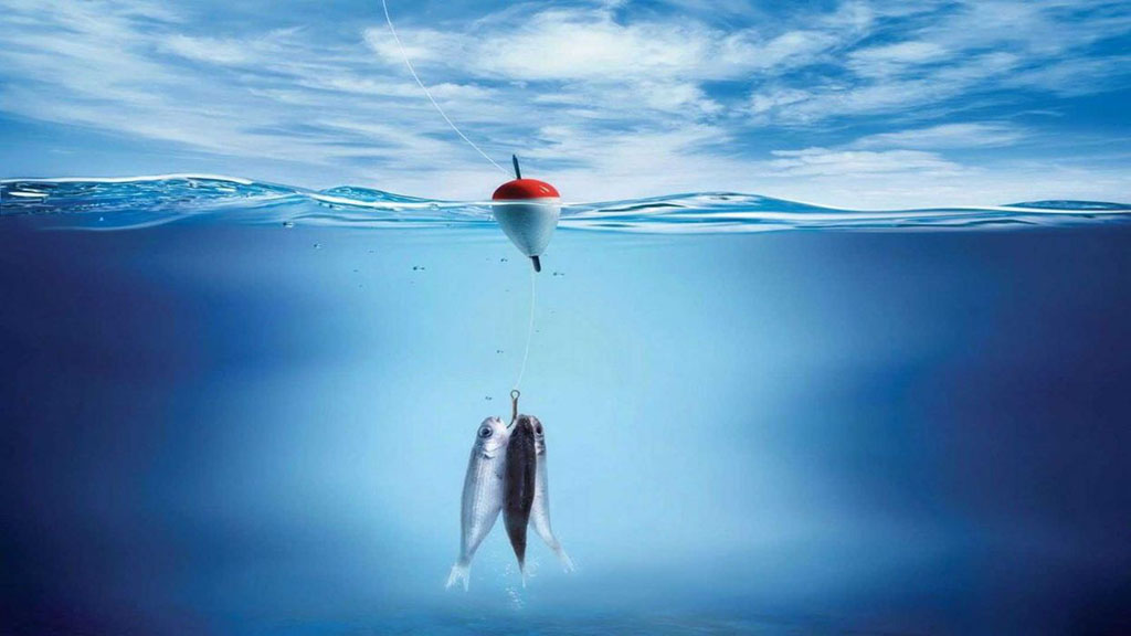 保护海洋资源:吃鱼也要负责任的~🐟