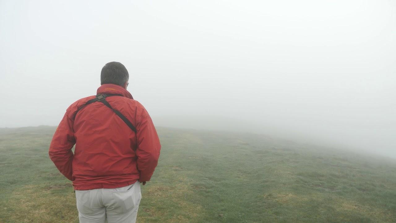 和我们一起去比利牛斯山,看看两岸的山毛榉森林长什么样~